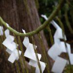 チコちゃんに叱られる前に初詣・神社へのお参りのしかた